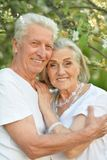 Портрет красивых старших пар представляя в парке стоковые изображения rf