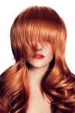 Портрет красоты. Здоровые длинние волосы. стоковые фотографии rf