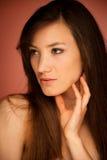 Портрет красоты привлекательной молодой женщины брюнет Стоковое Фото