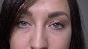 Портрет крупного плана стороны взрослого кавказского брюнета женской с глазами смотря камеру с предпосылкой изолированной на серо акции видеоматериалы