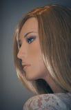 Портрет куклы Стоковое Изображение RF