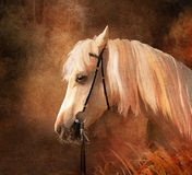 портрет лошади иллюстрация штока