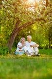 Портрет любить пожилых пар имея пикник стоковое фото rf