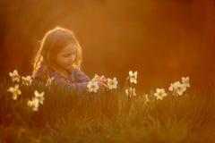Портрет маленькой девочки на открытом воздухе около цветков narcissus на заходе солнца стоковое изображение