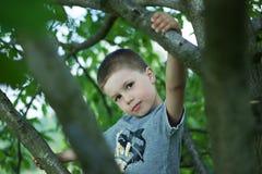портрет мальчика милый напольный Стоковое фото RF