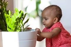 Портрет маленькой Афро-американской маленькой девочки усмехаясь - чернота Стоковые Изображения RF