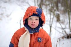 Портрет мальчика 3 года старого с красными щеками от холода Стоковое Изображение RF