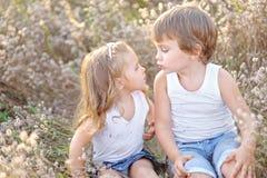 Портрет мальчика и девушки на поле Стоковые Изображения RF