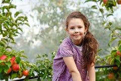 Портрет меньшей девушки schoool в красочных одеждах и резиновых ботинках камеди с красными яблоками в органическом саде прелестно стоковые изображения rf