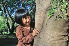 Портрет милой азиатской маленькой девочки обнимая большое дерево стоковые фотографии rf