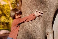 Портрет милой азиатской маленькой девочки обнимая большое дерево стоковая фотография