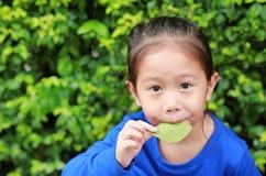 Портрет милой маленькой азиатской девушки ребенка дуя лист в саде природы стоковая фотография