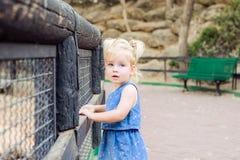 Портрет милой маленькой blondy девушки малыша смотря камеру и полагаясь на деревянном обнести безопасность c ребенка парка зоопар Стоковое фото RF