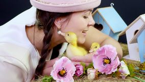 Портрет, милая молодая женщина с 2 отрезками провода и в смешной розовой шляпе играя с малыми желтыми утятами студия сток-видео