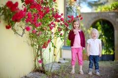 Портрет 2 милых маленьких сестер outdoors Стоковые Фото