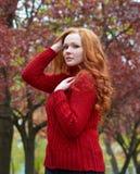 Портрет молодой женщины в парке осени, листьях желтого цвета и деревьях Стоковая Фотография RF