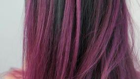Портрет молодой женщины на белой предпосылке Длинные покрашенные волосы Ombre, пятнать цвета Сирень и синь акции видеоматериалы