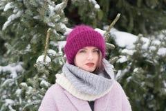 Портрет молодой красивой девушки outdoors в зиме Стоковые Изображения