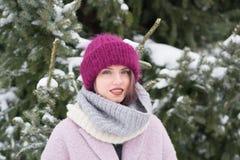 Портрет молодой красивой девушки outdoors в зиме Стоковое Изображение
