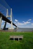 портрет моста Стоковые Изображения RF