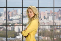 Портрет молодого красивого работника офиса Стоковые Изображения RF