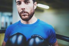Портрет молодого человека бокса смотря агрессивный с перчатками бокса на кольце Кавказский спортсмен в черных перчатках смотря Стоковое Изображение