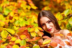 Портрет молодой женщины в цвете осени Стоковые Фото