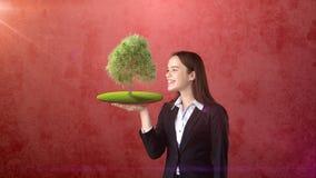 Портрет молодой женщины держа зеленое дерево на открытой ладони руки, над изолированной предпосылкой студии Дело, концепция eco Стоковое Изображение