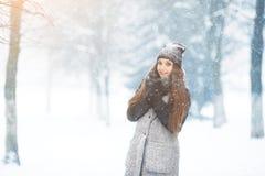 Портрет молодой женщины зимы Девушка красоты радостная модельная смеясь над и имея потехой в парке зимы красивейшие детеныши женщ Стоковое фото RF