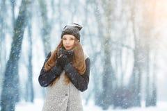 Портрет молодой женщины зимы Девушка красоты радостная модельная смеясь над и имея потехой в парке зимы красивейшие детеныши женщ Стоковая Фотография