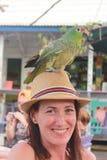 Портрет молодой красивой женщины при зеленая ара стоя над ее шляпой в славном баре в гавани Toro del Bocas Стоковые Изображения