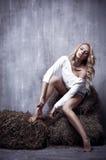 Портрет молодой сексуальной девушки сидя на сене, на textura Стоковые Фотографии RF