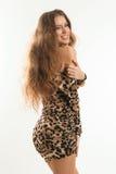 Портрет моды молодой девушки брюнет в платье леопарда Стоковая Фотография