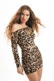 Портрет моды молодой девушки брюнет в платье леопарда Стоковые Фото