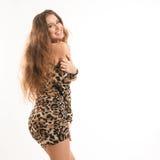 Портрет моды молодой девушки брюнет в платье леопарда Стоковое Изображение RF