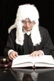 Портрет мужского юриста с молотком и книгой судьи Стоковые Фотографии RF