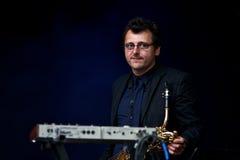 портрет музыканта Стоковые Фотографии RF