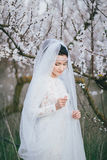 Портрет невесты в зацветая саде Стоковые Изображения