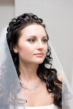 портрет невесты коричневый с волосами Стоковое Фото