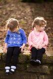 Портрет образа жизни идентичных близнцов Стоковое фото RF