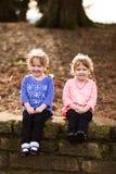 Портрет образа жизни идентичных близнцов Стоковые Изображения RF