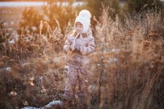 Портрет осени девушки в бежевой куртке и белой шляпе идя в поле Стоковые Изображения RF