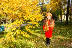 Портрет осени красивого казаха, азиатского ребенка Счастливая маленькая девочка с листьями в парке в падении Стоковые Изображения