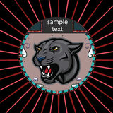 Портрет пантеры в круге Стоковые Фото
