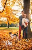 Портрет пар с 2 маленькими собаками на прогулке в парке Стоковая Фотография RF
