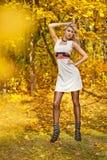 Портрет падение девушки в древесину Стоковые Фотографии RF