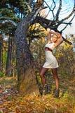 Портрет падение девушки в древесину Стоковое Фото