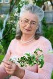 Портрет пожилой женщины красивой Стоковое фото RF