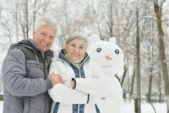 Портрет пожилых пар Стоковые Фото