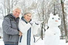 Портрет пожилых пар Стоковое фото RF